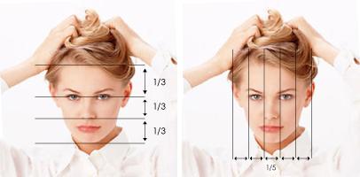 Анализ на лицето ан фас